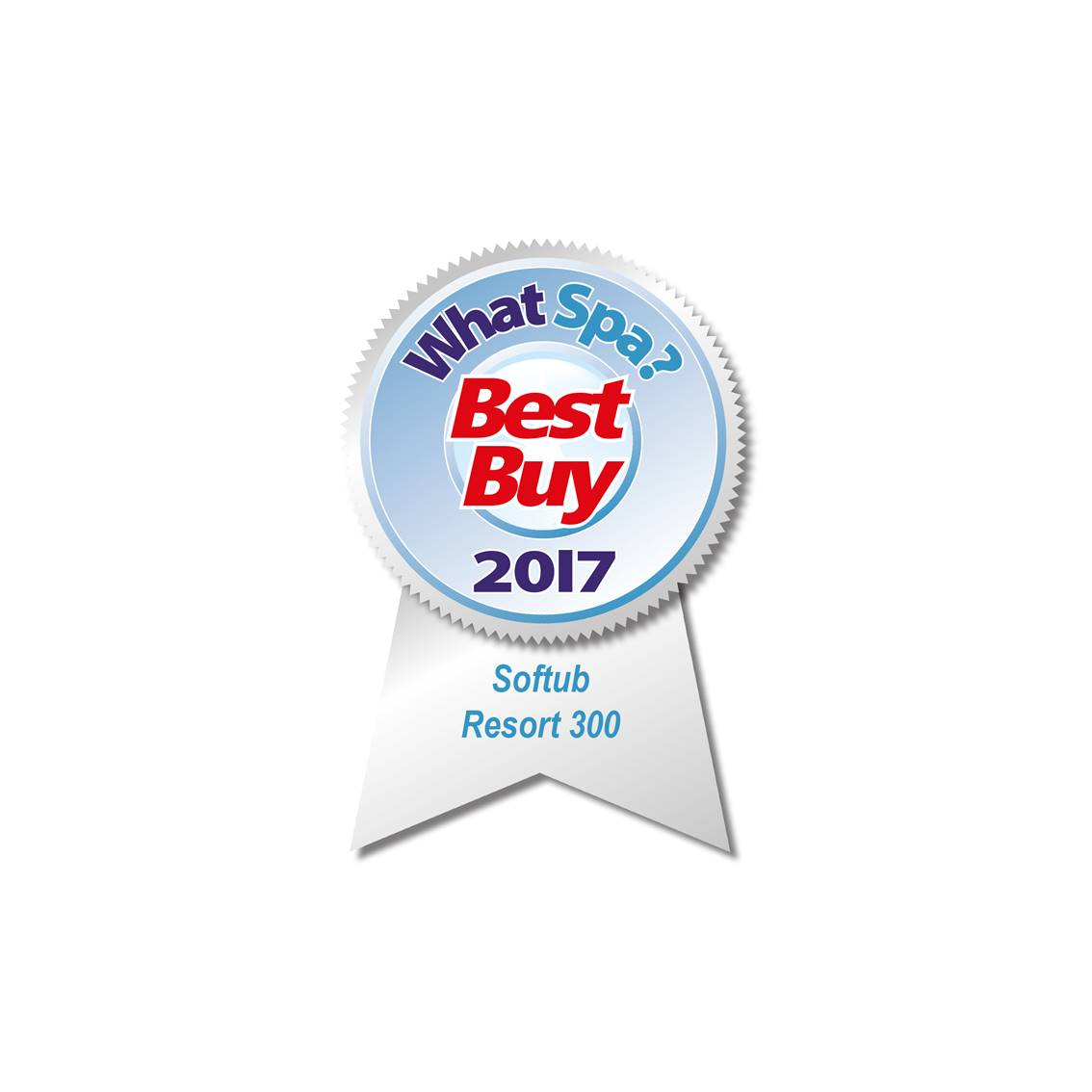 Best Buy Award 2017